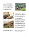 African journal10